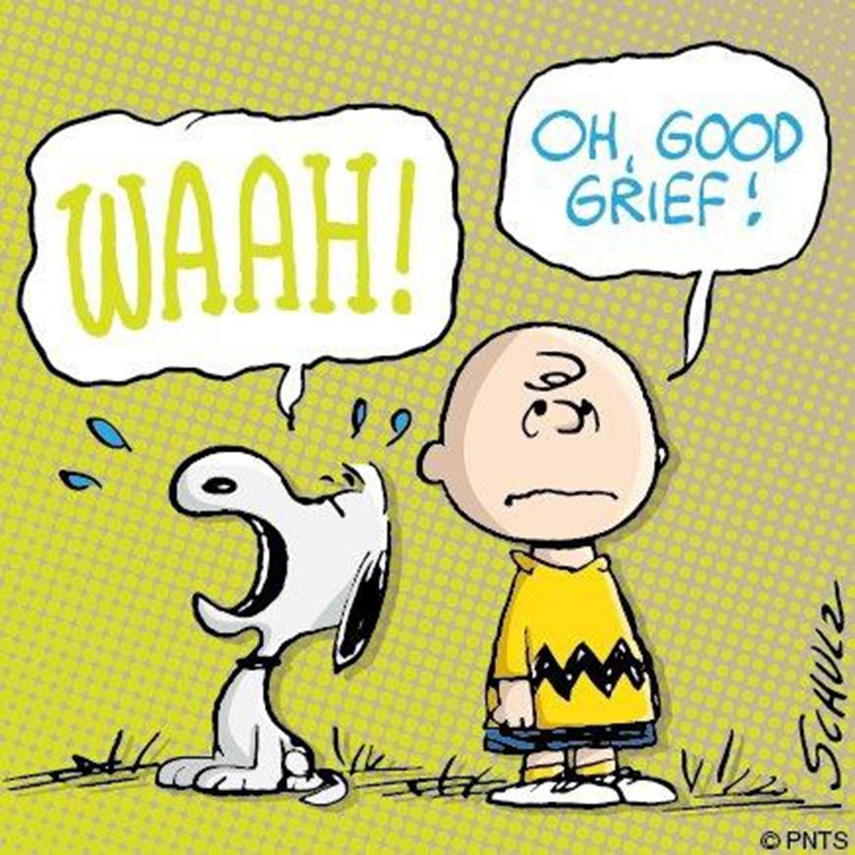 16: 2017 Episode 16 : Good Grief